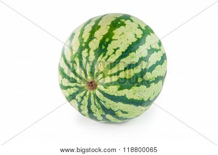 Whole Green Watermelon