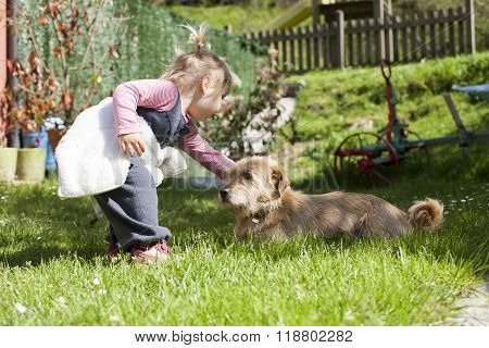 Baby Touching A Dog