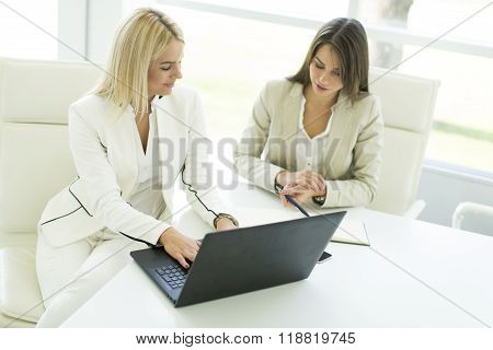 Young women working on the laptop in the office