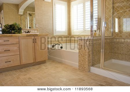 Modern bathroom in a house