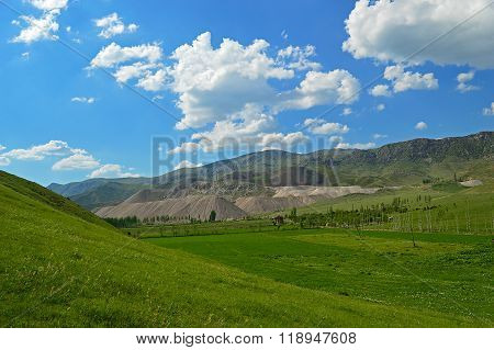 Green Meadow With Ore Stockpiles In Background