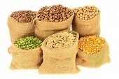 Edible (Eatable) seeds cooking by boiling: Legumes Pulses: Brown Lentil Romano Beans Chickpeas Peeled split green and yellow pea Mixed Brown Wild Rice in Burlap Bags over white background poster