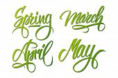 Spring. March, April, May. Spring months. Spring month lettering. Calligraphic season inscription. Vector handwritten typography. poster