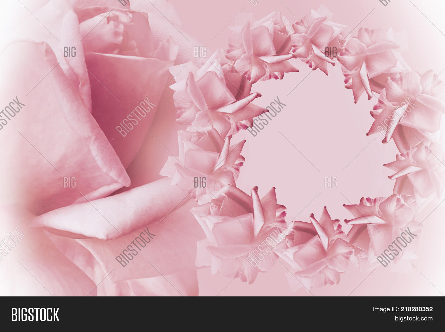 Floral Pink White Image Photo Free Trial Bigstock