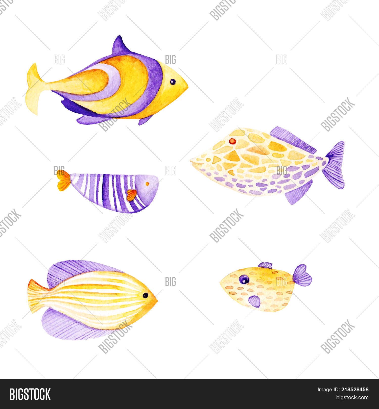 Watercolor Fish Frame Image & Photo (Free Trial) | Bigstock