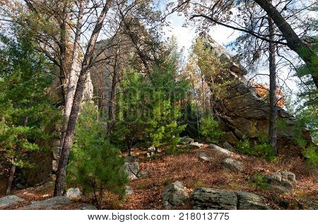 rock forms and forest scenery of petenwell bluff in juneau county necedah