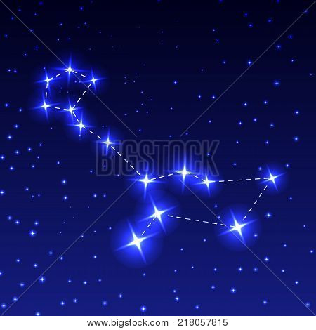 The Constellation Cetus in the night starry sky. Vector illustration of the concept of astronomy