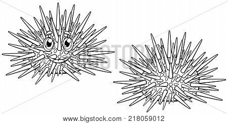 Set of cute cartoon sea hedgehog outline with the person and without. A vector illustration lineart of marine animals separately on a white background. Page of a coloring.