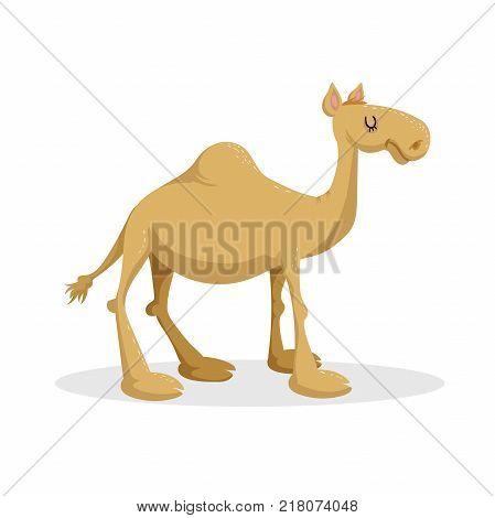 Cartoon trendy flat design dromedary camel. Standing desert african animal. Vector illustration icon.