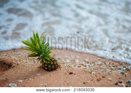 Pineapple on the beach.Tropical summer delights. Fresh pineapple on the beach.Pineapple on hawaii be