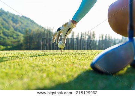 hand of woman golf player gentle put a golf ball onto wooden tee on the tee off to make ready hit away from tee off to the fairway ahead