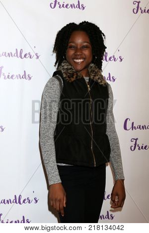 LOS ANGELES - DEC 10:  Haley Powell at the Chandler's Friends Toy Drive & Wrapping Party  at Los Angeles Ballet Academy on December 10, 2017 in Los Angeles, CA