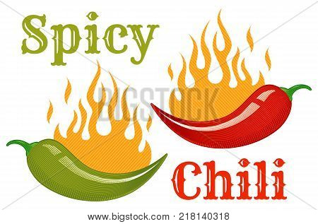 Vintage vector chili peppers with flame in engraving style. Retro illustration of red and green chili peppers in fire.