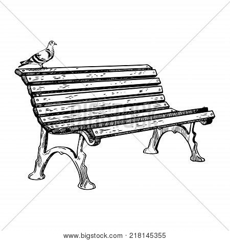 Park bench and pigeon engraving vector illustration. Scratch board style imitation. Hand drawn image.