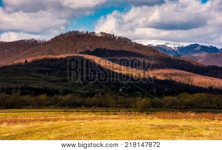 rural fields at the foot of the forested mountain with snowy top. lovely countryside springtime scenery on a cloudy day