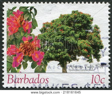 BARBADOS - CIRCA 2005: Postage stamps printed in Barbados, depicted African tulip tree, circa 2005