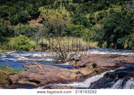 The top of the Murchison Falls, also known as Kabalega Falls, is a waterfall between Lake Kyoga and Lake Albert on the White Nile River in Uganda.