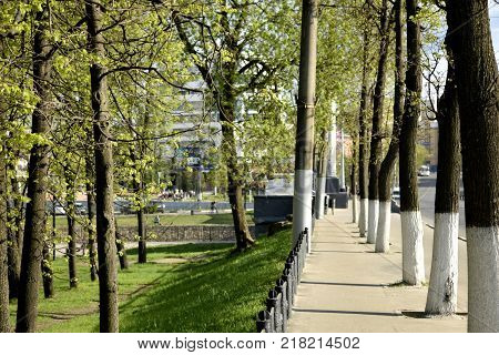The urban revival of nature in spring as the beginning of a new life in the city