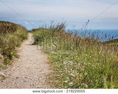 Countryside path, Scottish Highlands. A rural footpath in the Scottish highlands on a bright summers day with wild flowers and heather and the north sea visible on the horizon.