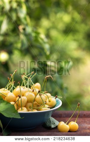 Yellow cherry in a bowl in the garden at sunset light