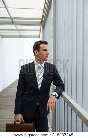 Portrait of well-dressed pensive businessman with briefcase