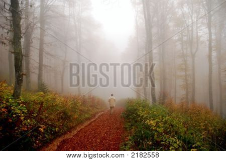 Man Disappearing In Fogy Forest