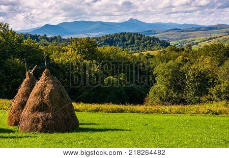 haystack on gcountrysiderassy lawn on hillside. ecology agricultural concept. Location near Pikui mountain Transcarpathian region Ukraine