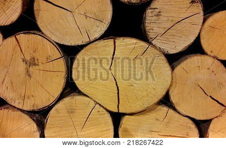 logs are not chopped, dry to kindle a furnace and a fireplace