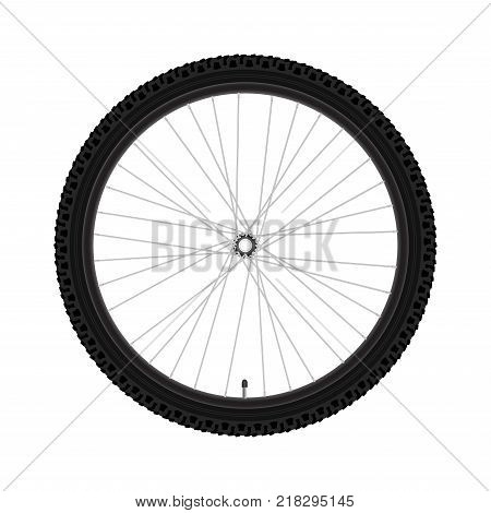 Vector Bicycle Wheel. Realistic Detailed Mountain Bike Wheel. Rim - Tyre - Hub - Spokes - Nipple.