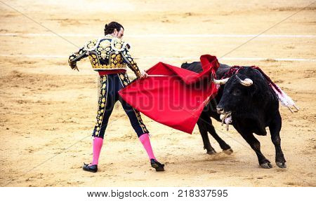 Spanish bullfight. .The enraged bull attacks the bullfighter. Spain Monumental Corrida de toros