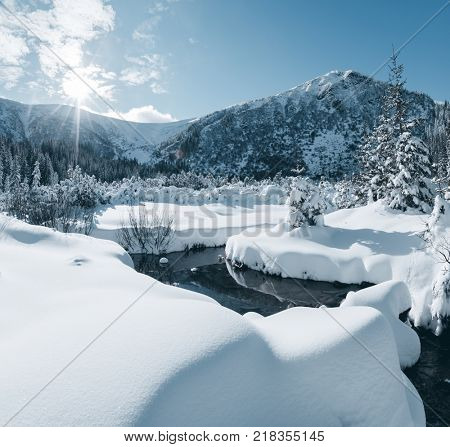 Scenic image of snowy alpine valley in sunlight. Frosty day on ski resort. Location Carpathian national park, Ukraine, Europe. Picture of adventure vacation. Discover the beauty of earth.