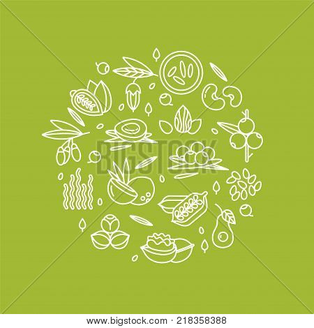 Superfood vector concept. Berries, nuts, vegetables fruits and seeds. Organic superfoods for health and diet. Detox and weightloss supplements.