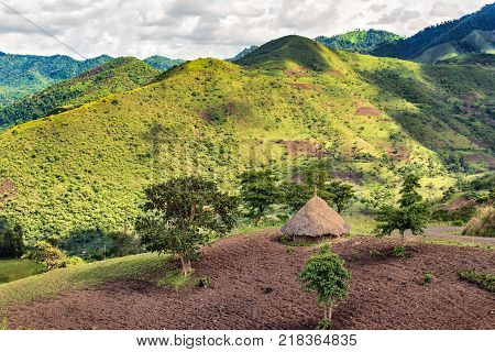 Traditional ethiopian hut in the Bonga forest reserve in southern Ethiopia