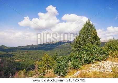 Beautiful summer landscape in mountains. Balkans, Montenegro, Niksic region