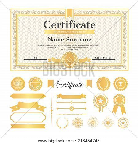 Certificate sample with stamps and signatures, text and name with surname above it, collection of ribbons on vector illustration isolated on white