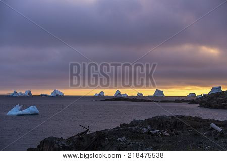 large group of icebergs at sunset; Fogo Island, Newfoundland, Canada