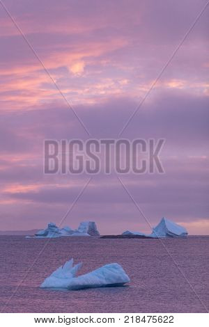 icebergs and purple sunset, Fogo Island, Newfoundland