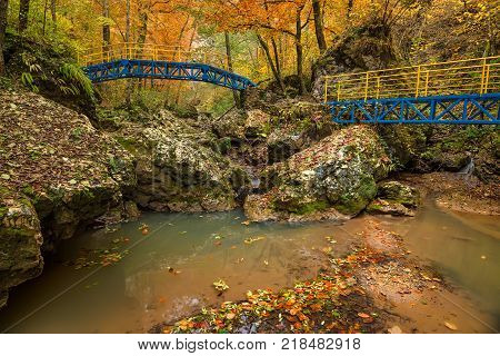 Autumn forest with stream flowing through the thicket and bridges over it