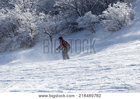 skier skiing . In the park in nature