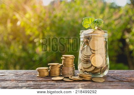 Coins and plant in bottle Business investment growth and saving concept. Coins in bottle on white background Business investment growth concept