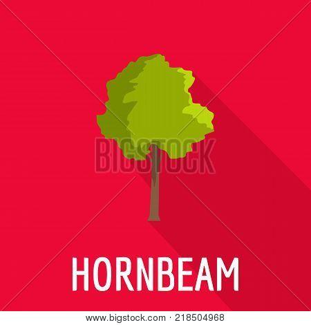 Hornbeam tree icon. Flat illustration of hornbeam tree vector icon for web