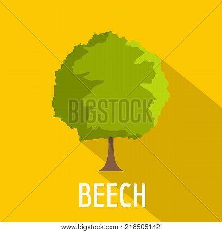 Beech tree icon. Flat illustration of beech tree vector icon for web