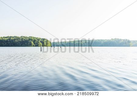 Silhouettes of geese flying above water in Burke Lake in Fairfax County Northern Virginia in summer morning