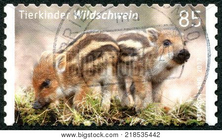 GERMANY - CIRCA 2017: A stamp printed in Germany shows a Baby wild boar (Sus scrofa) circa 2017