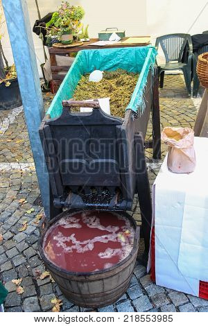 Equipment for grape processing at the fair