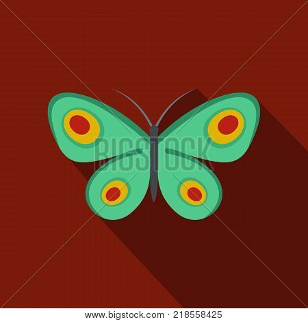 Unknown butterfly icon. Flat illustration of unknown butterfly vector icon for web