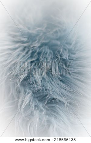 Light blue faux fur detail closeup