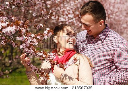 Dating. Young woman and man walking couple in love relaxing in blossoming cherry trees park at sunny spring day