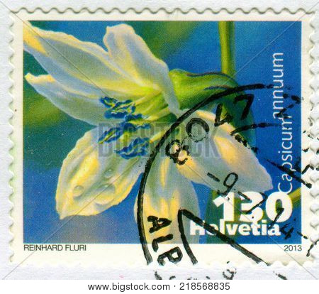 GOMEL, BELARUS, 9 DECEMBER 2017, Stamp printed in Switzerland shows image of the Capsicum annuum is a species of the plant genus Capsicum native to southern North America, circa 2013.