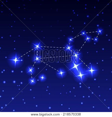 The Constellation Leo in the night starry sky. Vector illustration of the concept of astronomy